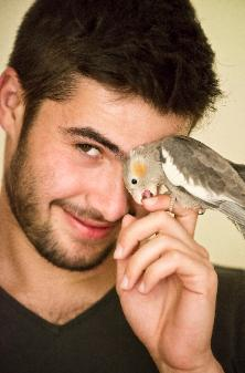 bird-sitting-pet-sitting-gardiennages-pour-oiseaux-petits-animaux-soins-montreal